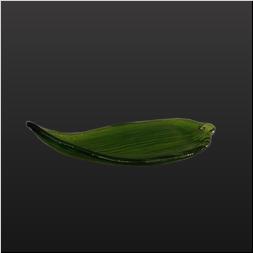 品 番:1041130001 商品名:笹の葉 小皿 サイズ:220×85